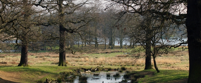 RichmondPark_02_ENG_CC